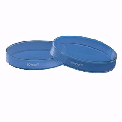 Culture and Petri Dish - 50 x 17mm