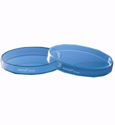 Petri Dish - 100 x 15mm