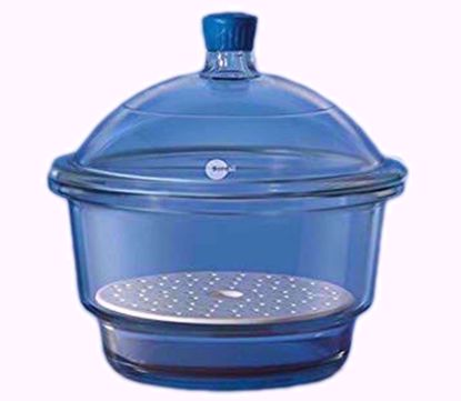 Desiccator with Cover Porcelain Plate and Plastic Knob - 250 mm