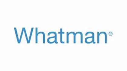 Picture for manufacturer Whatman