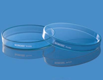 Petri Dish - 80x15 mm