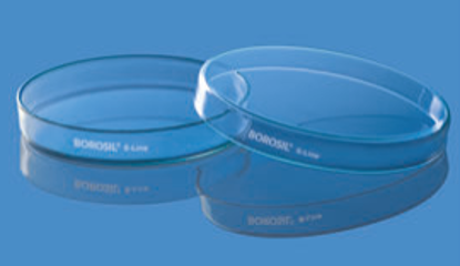 Culture and Petri Dish - 80 x 17 mm