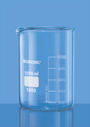 Low Form With Spout Beaker - 800 ml